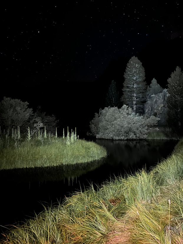 iPhone 13 Pro - Night Mode, Low light Photos